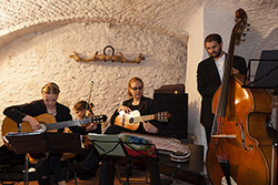 Saitenmusik Neualbenreuth